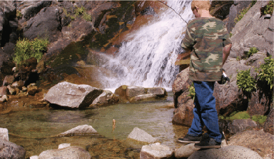 Northern California Stream Fishing