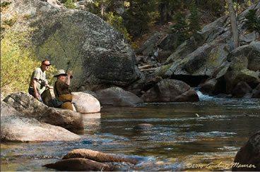 Fly Fishing Sierra Nevada River